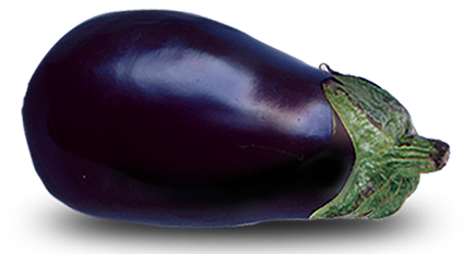 eggplant-isolated-crop-u28809
